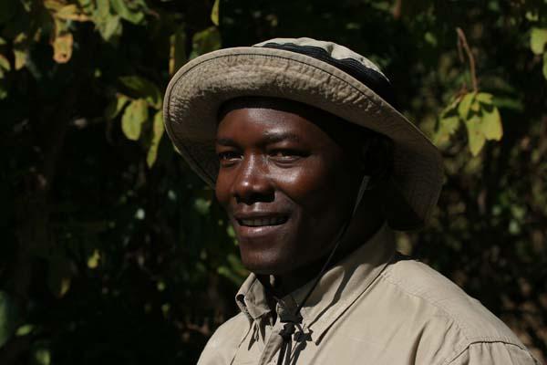 Wildlife photographic safari