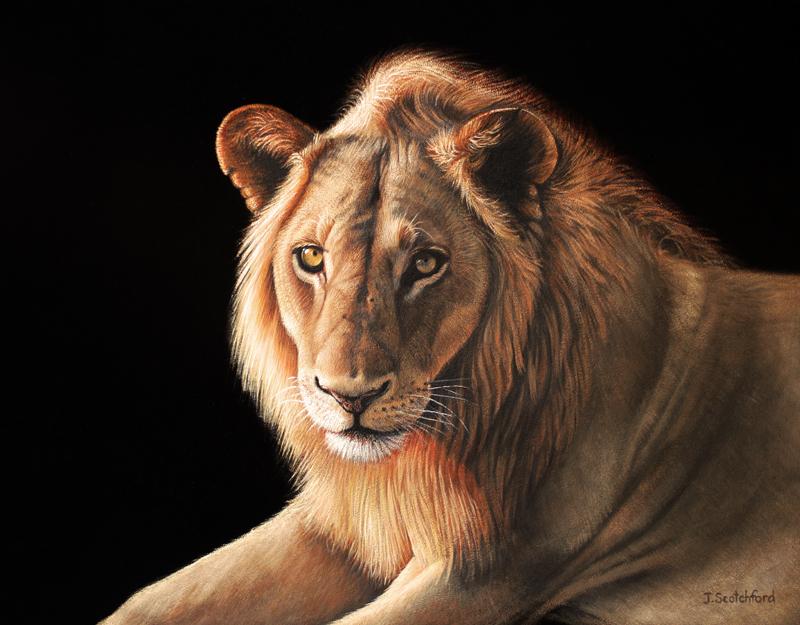 painting safaris