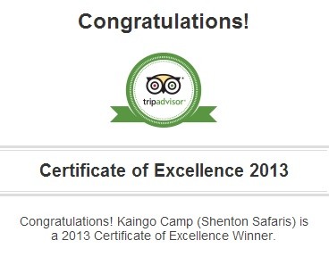 TripAdvisor Certificate of Excellence_3