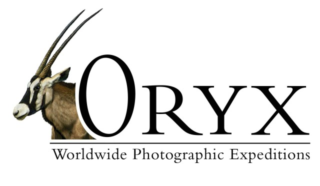 oryx logo new_FINAL
