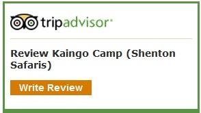 TripAdvisor Review Kaingo
