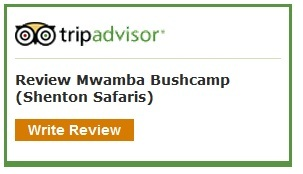 TripAdvisor Review Mwamba