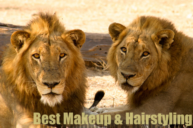Best Make Up and Hairstyle