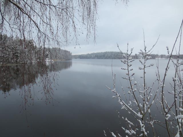 Shentons in Sweden (14)