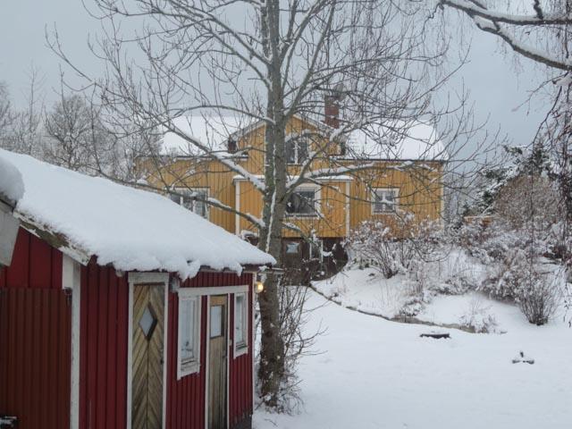 Shentons in Sweden (15)