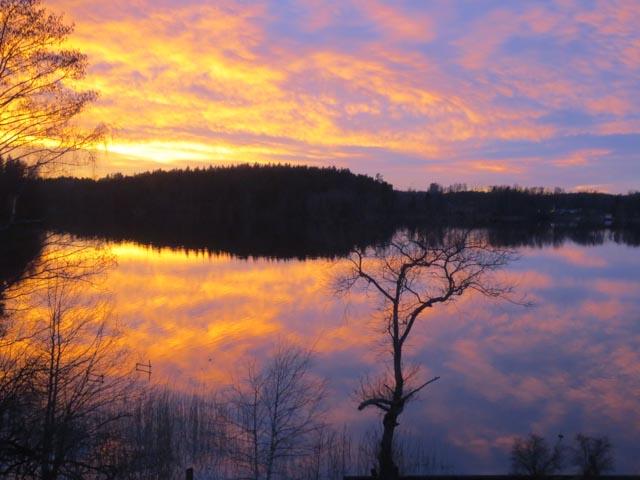 Shentons in Sweden (8)