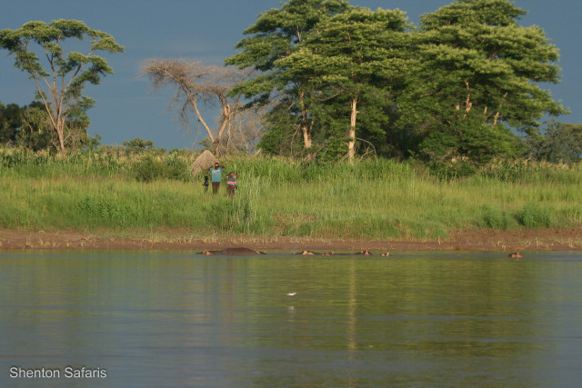 Village on the banks of the Luangwa
