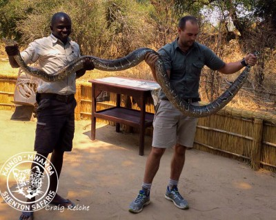 African Rock Python Gets New Home!